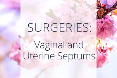 Surgeries, Vaginal and Uterine Septums, Los Angeles Gynecological Surgeon Thais Aliabadi