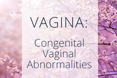 ransverse vaginal septum, Longitudial vaginal septum, Congenital Vaginal Abnormalities, Menopause Center Los Angeles
