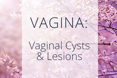 Vagina, Vaginal Cysts and Lesions, Menopause Center Los Angeles