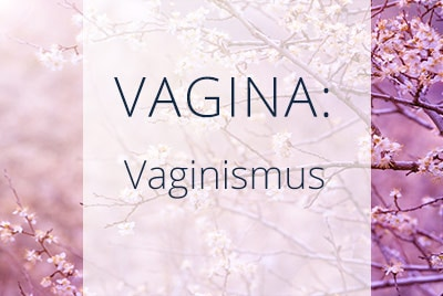 Vagina, Vaginismus, Menopause Center Los Angeles