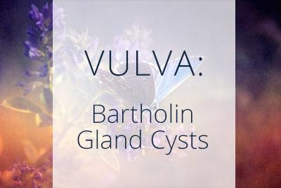 Vulva, Bartholin Gland Cysts