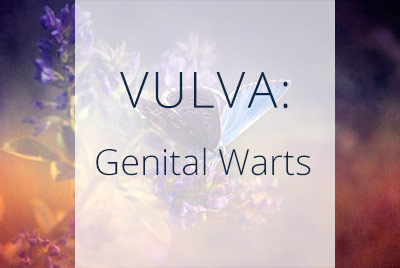 Vulva, Genital Warts, Menopause Center Los Angeles
