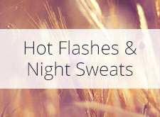 Hot Flashes & Night Sweats During Menopause: prevention & treatments
