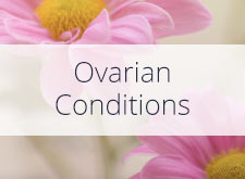 Ovarian Conditions