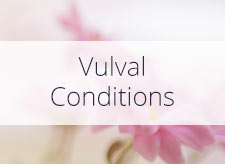 Vulval Conditions