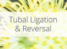 Tubal Ligation and Reversal