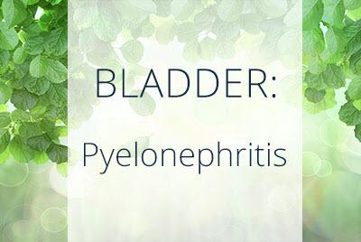 Kideny Infections, Pyelonephritis