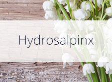 Hydrosalpinx