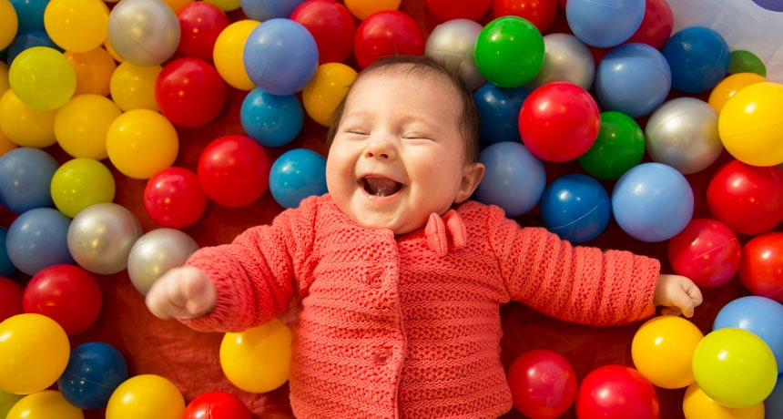 Think Human Babies and Puppy Dogs Can't See Color? New Research Tells Us One of Them Can!