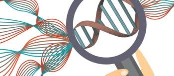 Genetics - Illustration